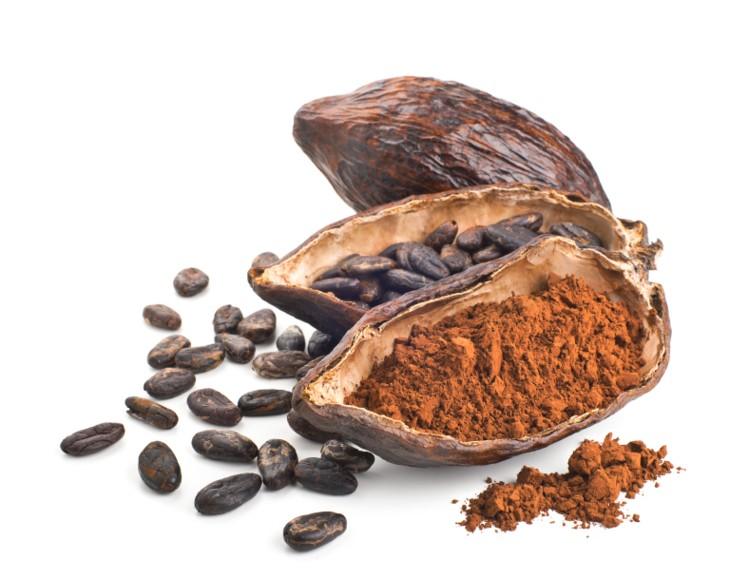 قیمت پودر کاکائو کارگیل Cargill Cocoa Powder