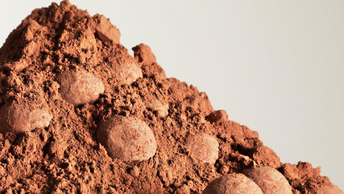 پودر کاکائو اصل را از کجا بخریم؟