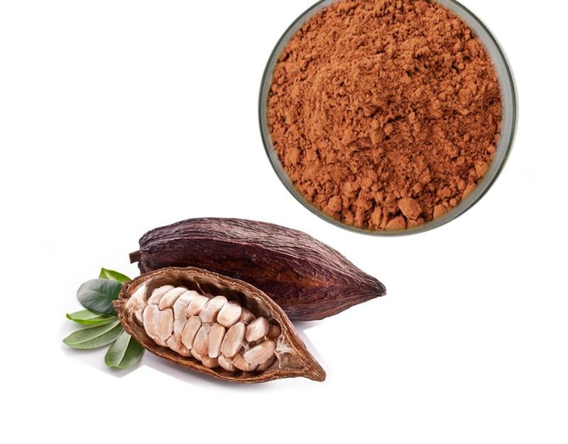 مراحل تولید پودر کاکائو نچرال