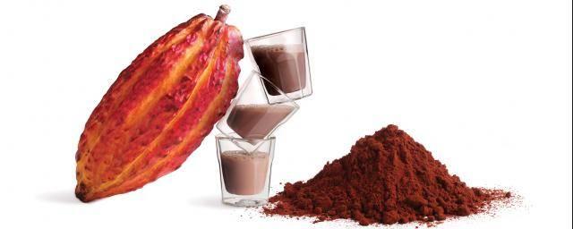 بهترین مرکز خرید پودر کاکائو خوب