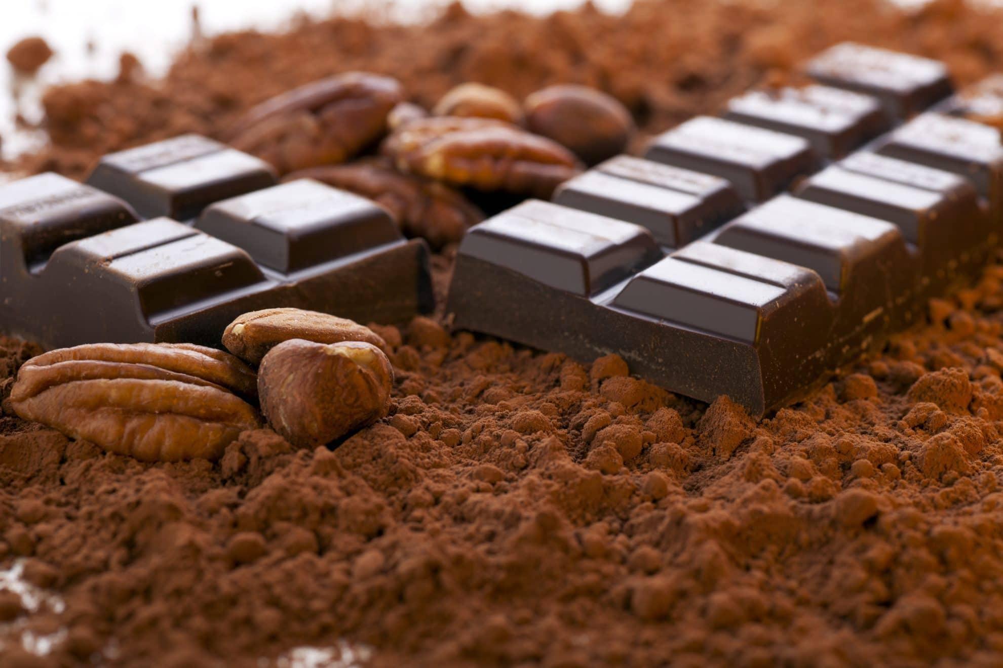 ارزان ترین پودر کاکائو در بازار