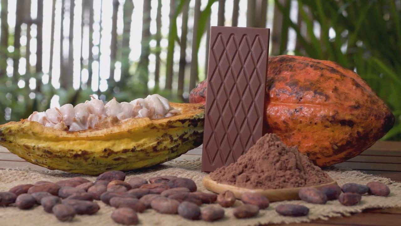 ارزان ترین پودر کاکائو