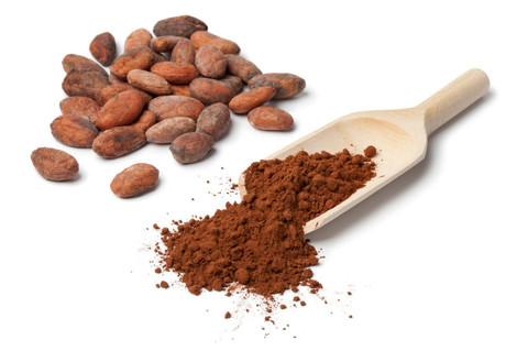 ارائه انواع پودر شکلات در تناژ بالا