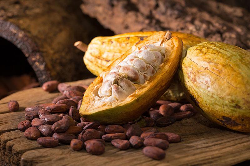 قیمت پودر کاکائو مالزی